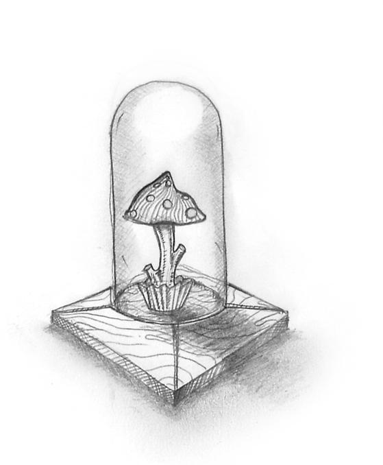 champignons-copy