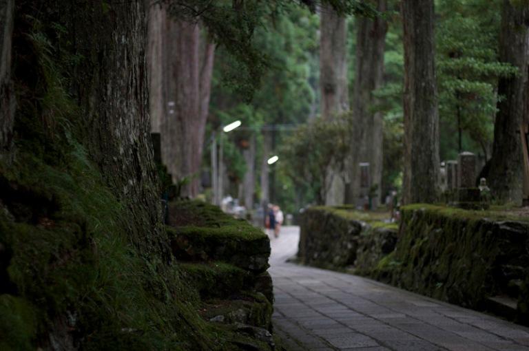 Koya chemin