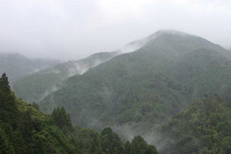 Koya montagne