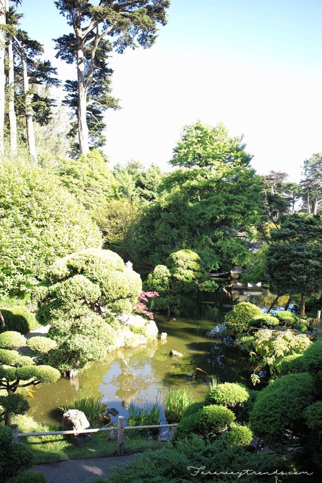 JapaneseGarden4