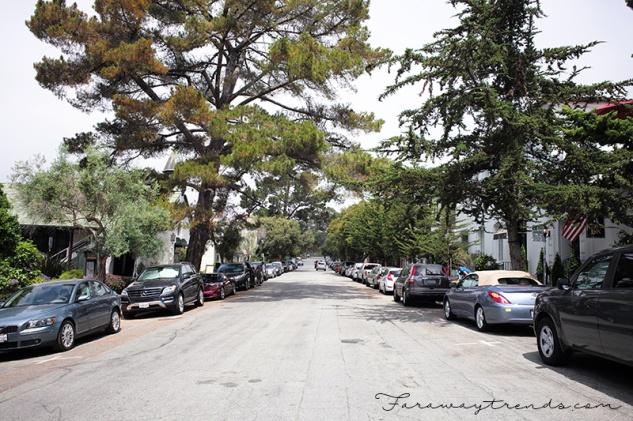 Carmel22